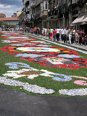 Ponteareas - Floral carpet.