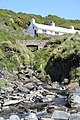 Cottages at Trefin - geograph.org.uk - 421312.jpg
