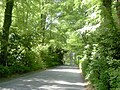 Country Road, Co Meath - geograph.org.uk - 1878273.jpg