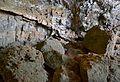Cova Tallada, roques a l'interior.JPG