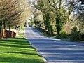 Crawfordsburn Road, Clandeboye (3) - geograph.org.uk - 754782.jpg