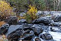 Creek crossing for A.B. Young Trail (37962483074).jpg