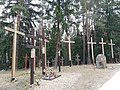 Crosses in Kurapaty.jpg