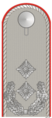 German Army(Oberstleutnant)