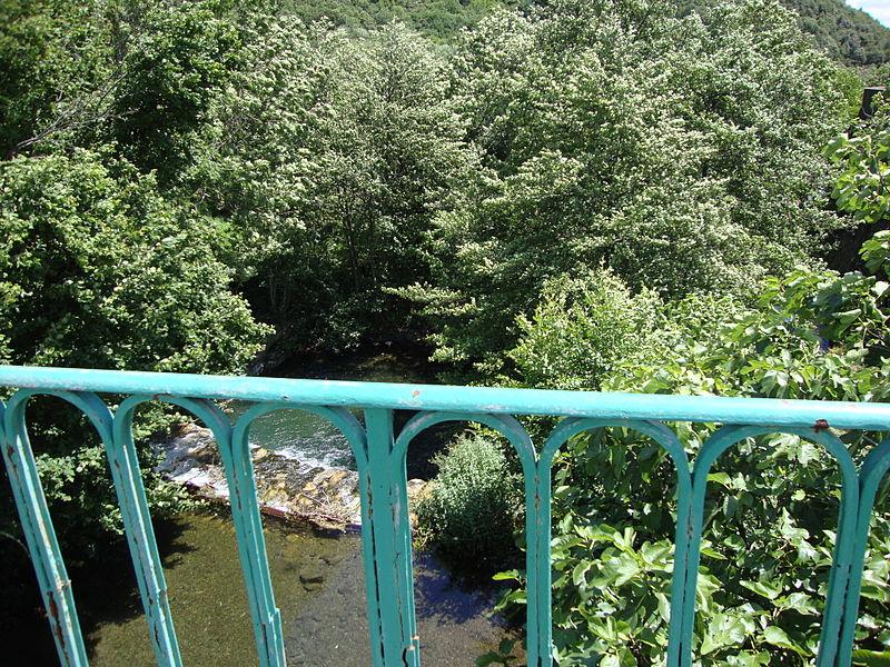 Le Bouissou à Saint-Geniès-de-Varensal près d'Andabre (Rosis, Hérault, Fr)