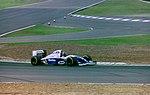 Damon Hill 1994 Silverstone 2.jpg