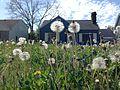 Dandelion house (26110291543).jpg