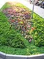 Danube garden Silistra.jpg