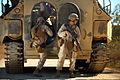 Defense.gov photo essay 110723-M-VX252-089.jpg