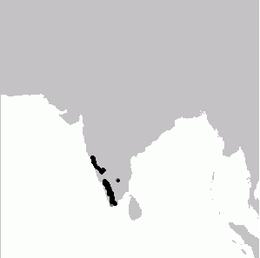 Dendrocitta leucogastra map