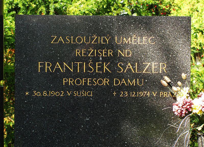 File:Detail hrobu František Salzer.jpg