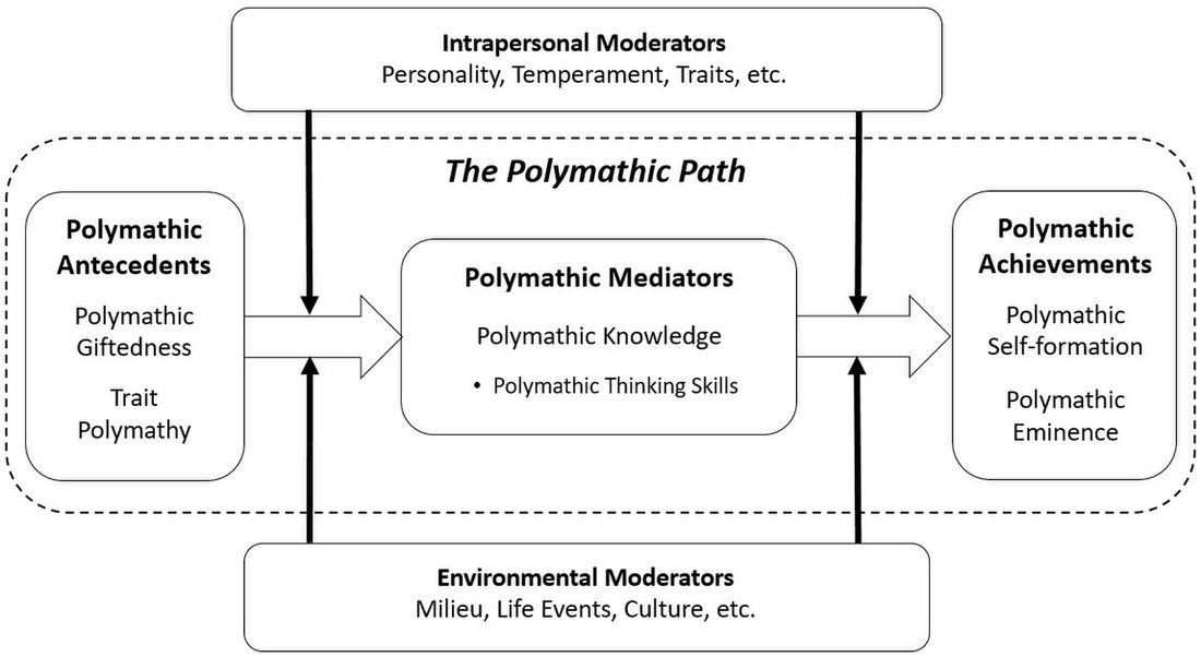 The Developmental Model of Polymathy (DMP) Developmental Model of Polymathy.jpg
