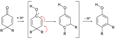 The dienone phenol rearrangement