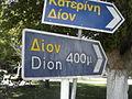 Dion plate.jpg