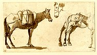 Drawing of mules by Claude Lorrain.jpg