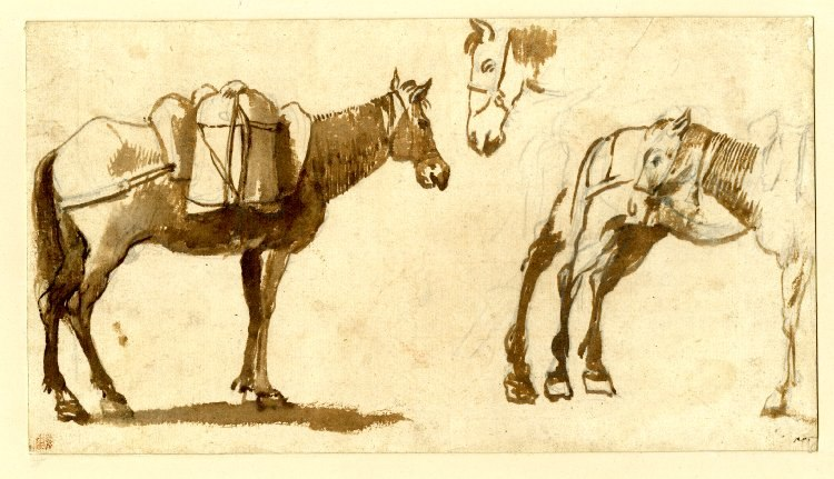 Drawing of mules by Claude Lorrain