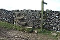Dry stone step-stile - geograph.org.uk - 411319.jpg
