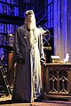 Dumbledore's Manikin.jpg