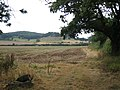 Dumbleton Hill - geograph.org.uk - 49575.jpg