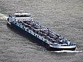 Dutch Princess (ship, 2012) IMO 9636486 ENI 02333730 at the Loreley.JPG