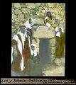 ETH-BIB-Bethanien, Grab Lazarus-Dia 247-F-00657.tif
