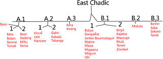 East Chadic languages