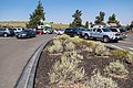 Eclipse weekend in Craters of the Moon - Tree Molds parking area (3) (36899705102) (2).jpg