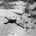 Een graf op de begraafplaats in de Jodensavanna, Bestanddeelnr 252-6458.jpg