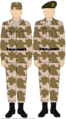 Egyptian Army camo uniform.png