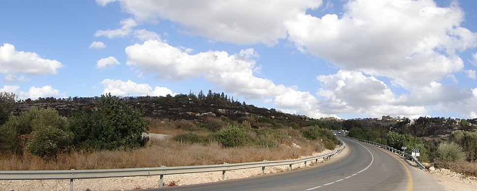 Ein Hod area after fire 3