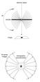 Electron Tomography.tif