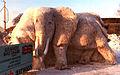 Elephants Quebec.jpg