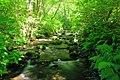 Ennis Creek (30345975264).jpg