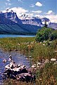 Epaulette Mountain and Waterfowl Lake.jpg