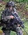 Estonian army faces OPFOR during Saber Junction 14.jpg