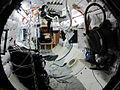 Eubank-Love-2011-Figur-ISS-1.jpg