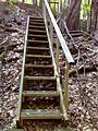FLT CT6 8.9 mi - S side, 14 steps of 3 2x4x24s, 2x12 sides, hand rail - 15 ordinary steps of double 2x4x30s - panoramio.jpg