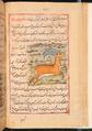 Faraḥ nāmah 062.png