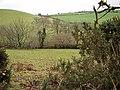 Farmland at Llanerch-yr-oen - geograph.org.uk - 293413.jpg