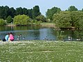 Feeding the geese - geograph.org.uk - 2375901.jpg
