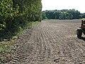 Field boundary near Garrington - geograph.org.uk - 1543908.jpg