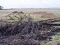 Field near Eagland Hill - geograph.org.uk - 1173317.jpg