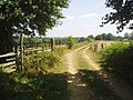 Fields at Lindfield farm - geograph.org.uk - 27620.jpg