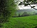 Fields by Elliot Lane - geograph.org.uk - 403447.jpg