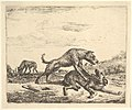Fighting Dogs, from Different Animals MET DP828093.jpg