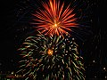 Fireworks, Niagara Falls (460527) (9446780025).jpg