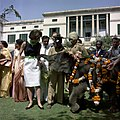 First Lady Jacqueline Kennedy Feeds Elephant in India.jpg