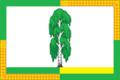 Flag of Omskoe rural settlement.png