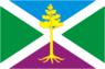 Flag of Sosensky (Kaluga oblast).png