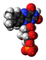 Flavin mononucleotide anion 3D spacefill.png